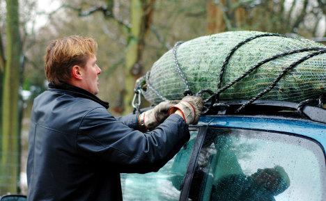 Bad knots 'turn Xmas trees into killers'