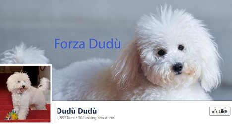 Silvio Berlusconi's pet dog is a Facebook hit