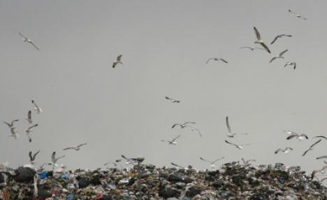 Italy to criminalize toxic waste burning