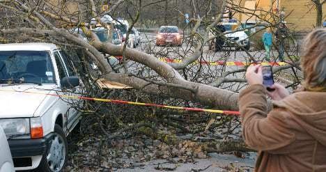 Thousands lose power as storm lashes Sweden
