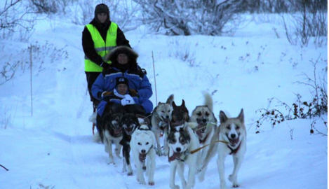 Norway airport launches first dog-sled taxis