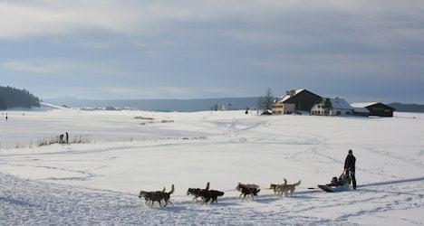 Switzerland's Siberia readies for 'cold festival'