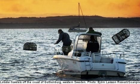 Swedish fishermen quitting jobs in droves