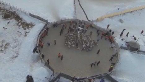 VIDEO: Reindeer swirl as herd splits up