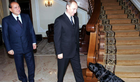 Berlusconi pushes for pet adoptions
