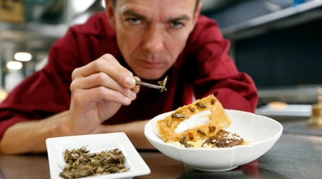 'New insect menu cost me my Michelin star'