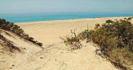 Headless body washed up on Italian beach