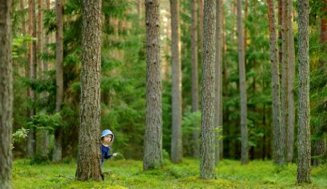 Nursery kids find drugs stash in woods