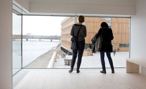 'Ageing Sweden needs foreign students to stay'