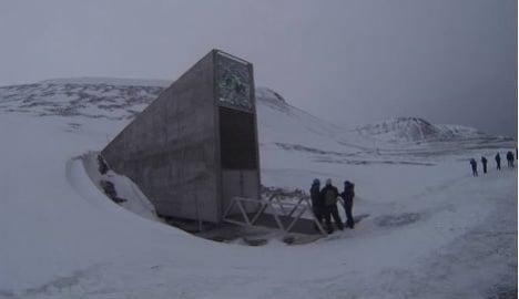 Syria genebank sends seeds to Svalbard