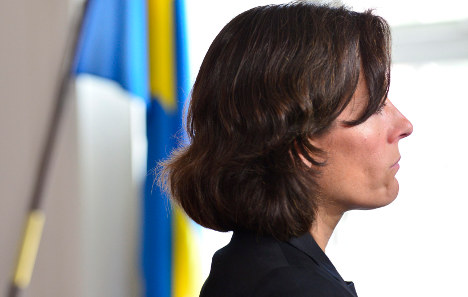 Sweden wants cruise missiles 'for defence'