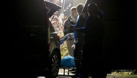 UN pins north Sweden's murders on booze