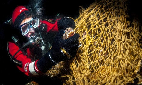 Clean-up saves sea life from trash filled nets