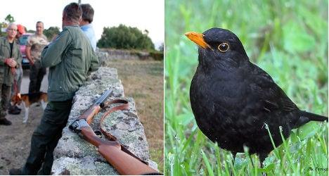 Pensioner shoots son mistaking him for bird