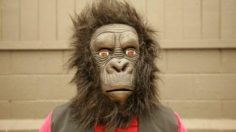 Zoo fail: man 'in gorilla suit' shot in training drill