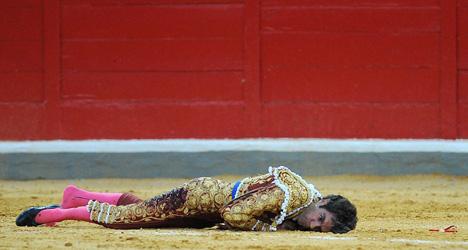 Star matador gored after rookie mistake