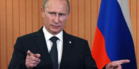 Putin's Austria visit criticized