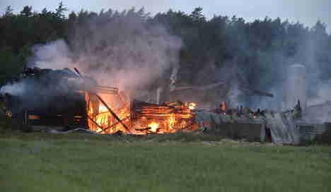 Hundred of pigs in barn blaze terror