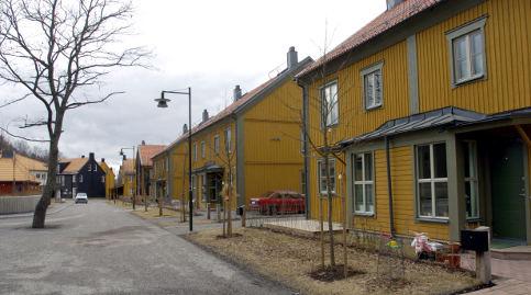 Swede imprisoned for torturing renovators