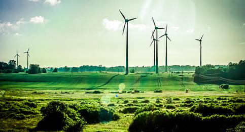 Swedes insist EU prioritize environment