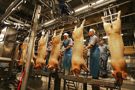 Norwegians worried about Danish pork safety