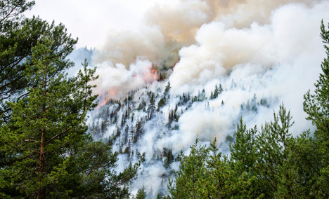 Warning: National risk of forest fires