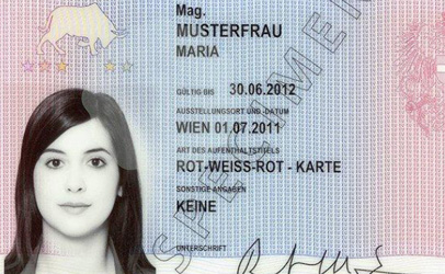 Calls for reform to immigration card