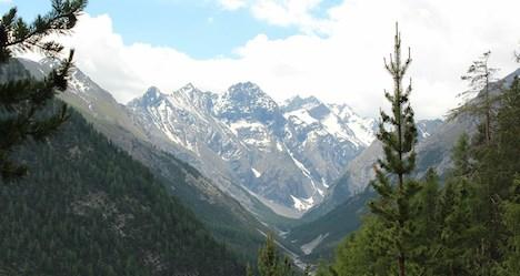 Swiss National Park: touring an Alpine refuge