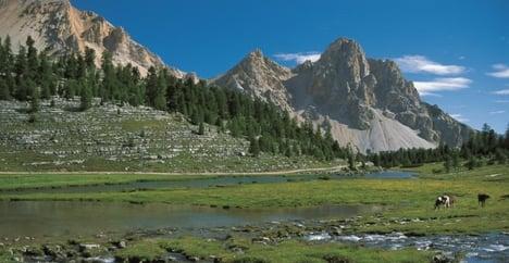 Austrian hiker dies in Italian Alps