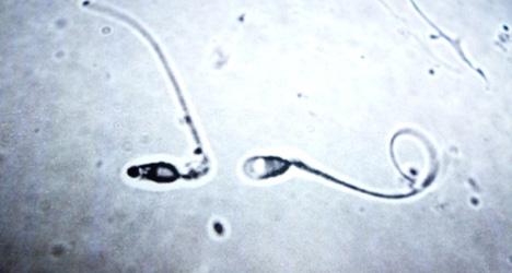 Judge demands study on 'Spain's worst semen'