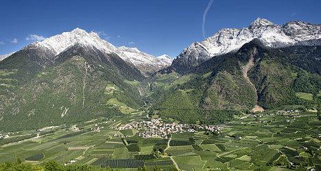German tourist falls to death in Italian Alps