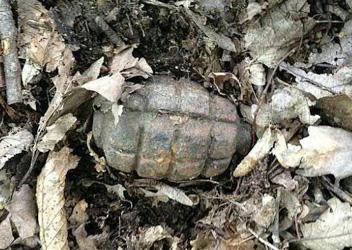 Pensioner finds grenade on mushroom hunt