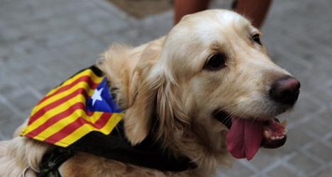 New York Times hails Catalan vote plan