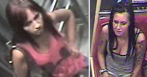 Police look for Vienna mugging women