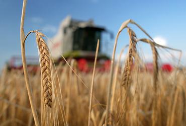 Austrian farmers look to new export markets