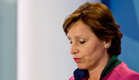 Munich minister resigns in 'model car scandal'