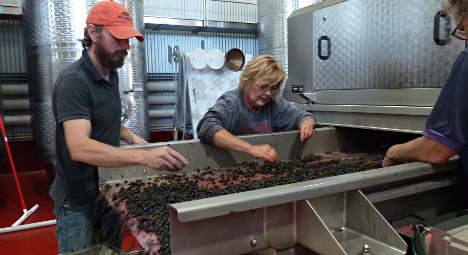 Winemakers bring 'French touch' to Virginia