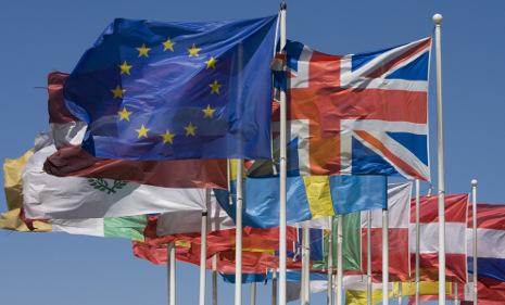 Sweden celebrates 20 years in European Union