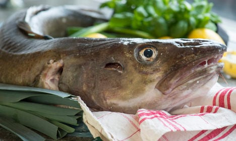 1.6 million Swedes are reeled in by fishing