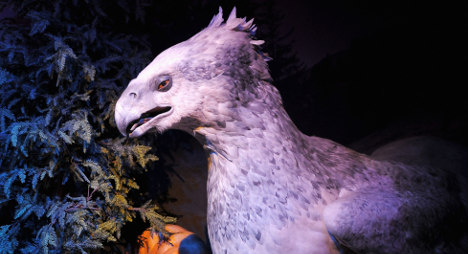 Harry Potter exhibition is heading to France