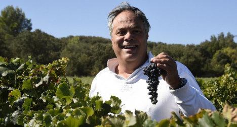 France's only kosher vineyard fights its corner