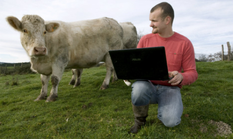 French dating site offers bulls on heat for cows