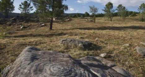 Tractor ruins ancient rock art in Galicia
