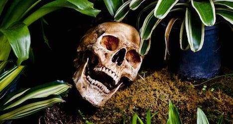 Lab fails Mexican mass murder DNA test