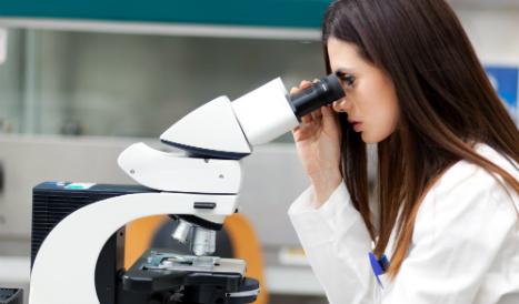 Britain seeks scientific collaboration with Spain