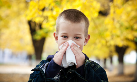 One in three Danish kids has asthma or allergies