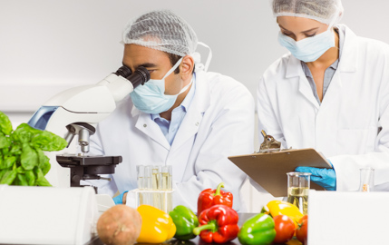 Foodborne disease 'worse than reported'
