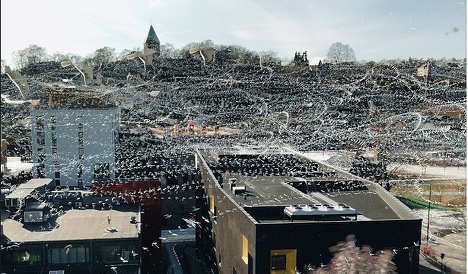 Oslo seagulls in amazing time-lapse photo
