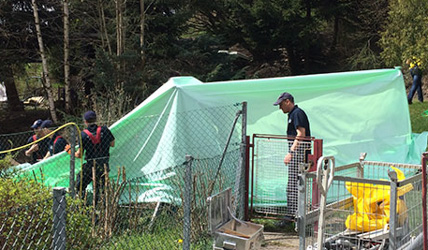 Suspect confesses to allotment murder