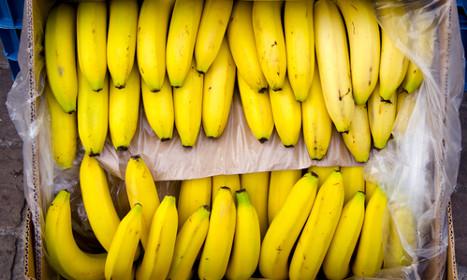 Woman buys snake with box of bananas